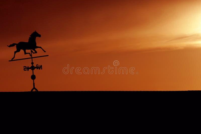 Silhueta do Weathervane do cavalo no por do sol fotografia de stock royalty free