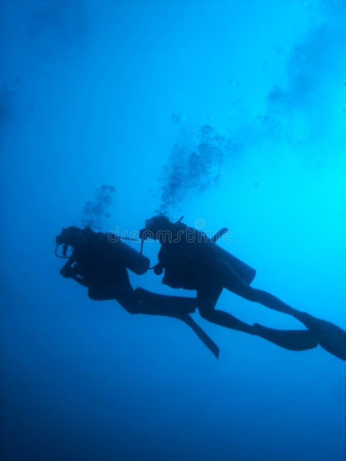 Silhueta dos mergulhadores do mergulhador imagens de stock royalty free
