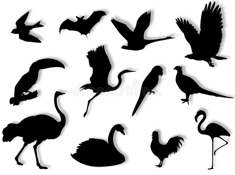 Silhueta dos pássaros ilustração stock
