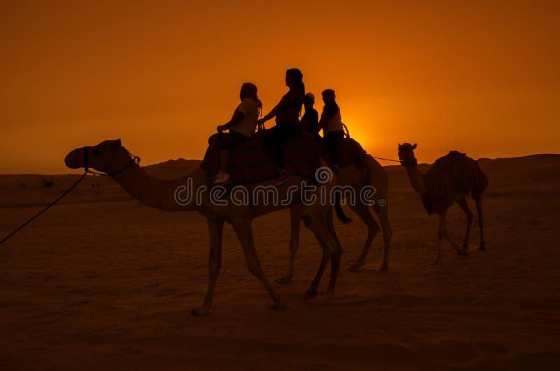 Silhueta dos povos em um camelo imagem de stock royalty free