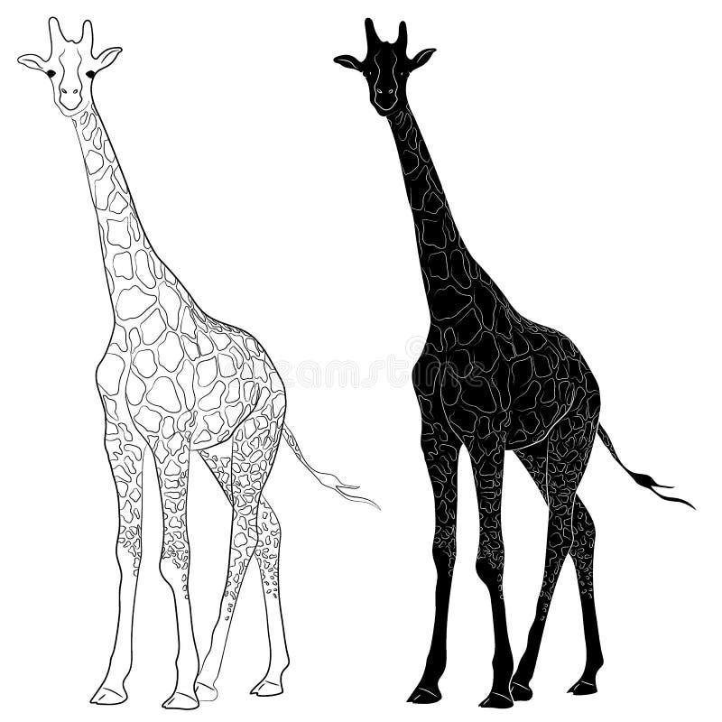 Silhueta e esboço do girafa ilustração royalty free