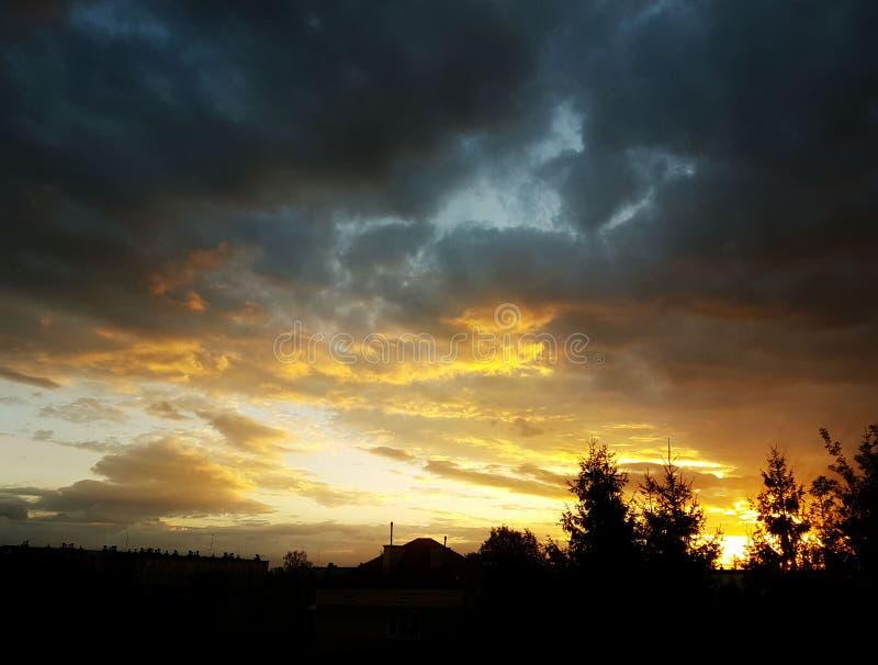 Silhueta escura das árvores e dos primos na perspectiva de um por do sol alaranjado Dobras da natureza da noite a um humor românt imagens de stock