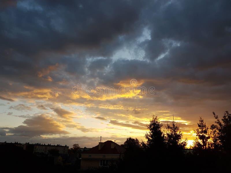 Silhueta escura das árvores e dos primos na perspectiva de um por do sol alaranjado Dobras da natureza da noite a um humor românt foto de stock
