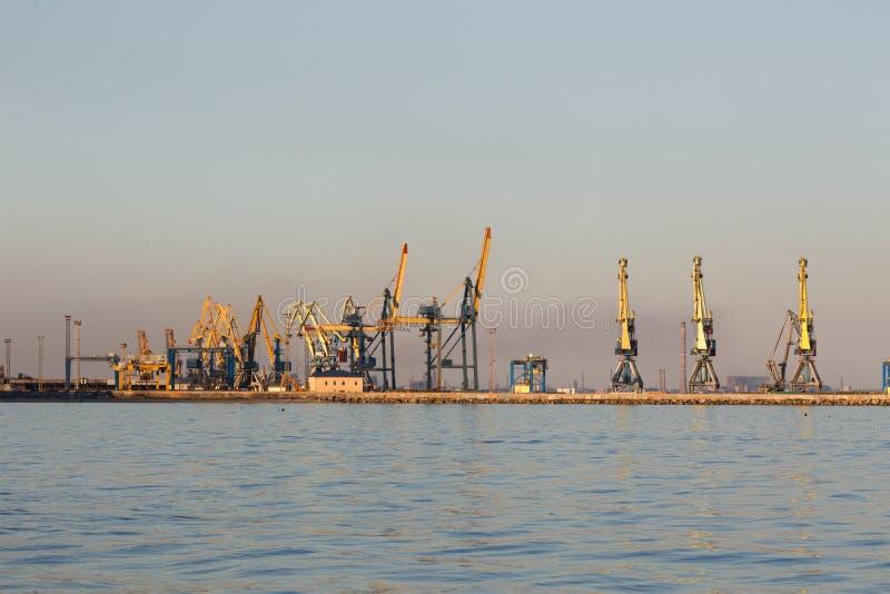 Silhueta grande de muitos guindastes no porto na luz dourada do por do sol Mariupol, Ucrânia imagem de stock royalty free