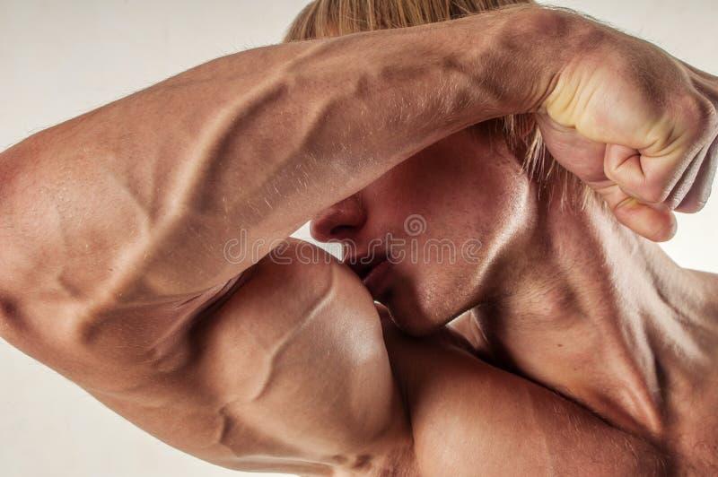 Silhueta masculina imagens de stock