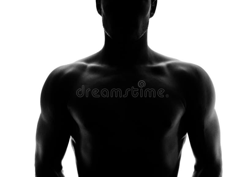 Silhueta muscular de um homem novo fotografia de stock