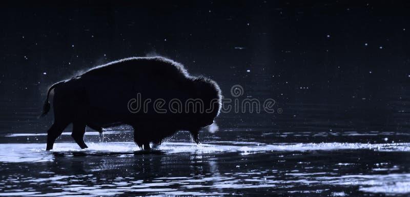 Silhueta no rio fotografia de stock