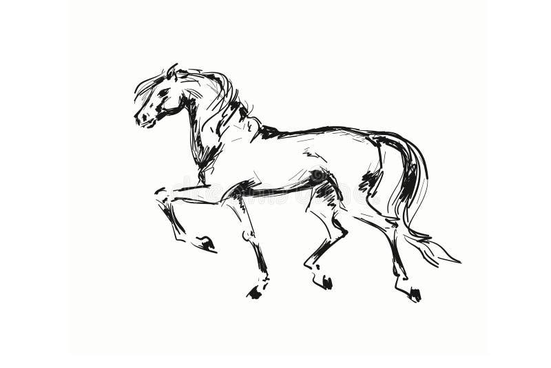 Silhueta pintada do cavalo em um fundo branco ilustração do vetor