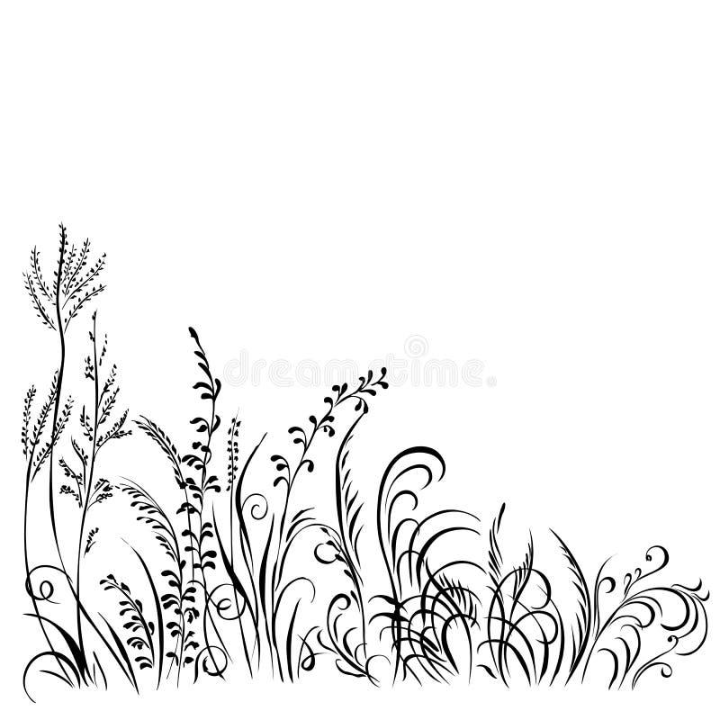 Silhueta preta da grama e das flores isolada no fundo branco ilustração stock