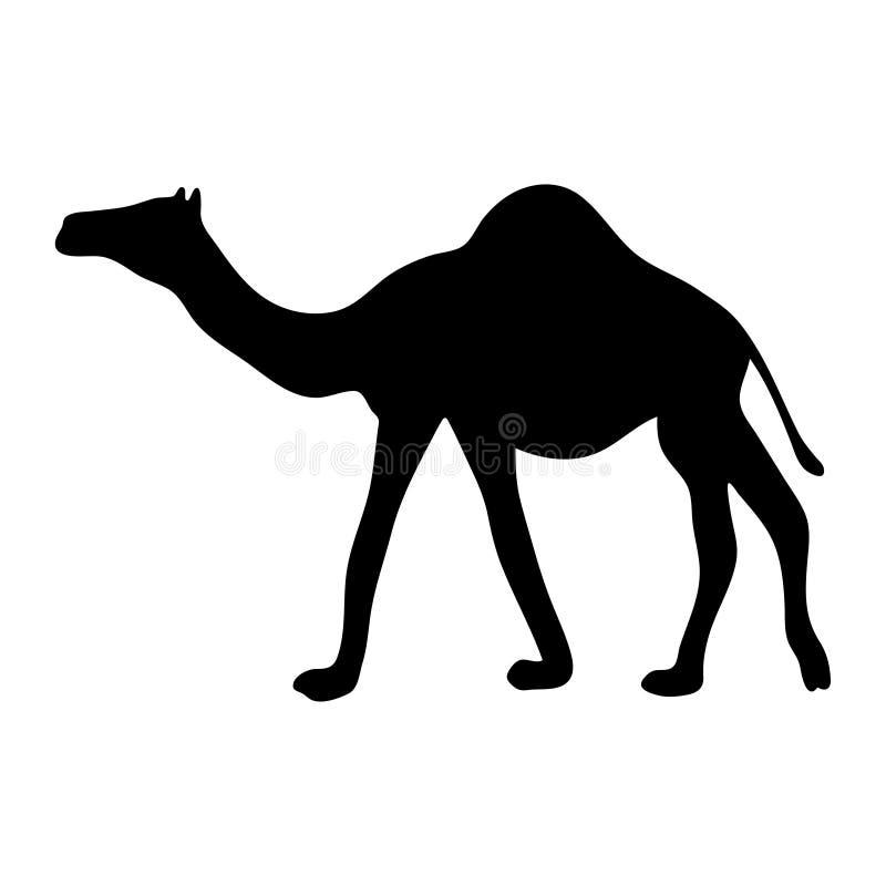 Silhueta preta de um camelo em um fundo branco ilustração do vetor