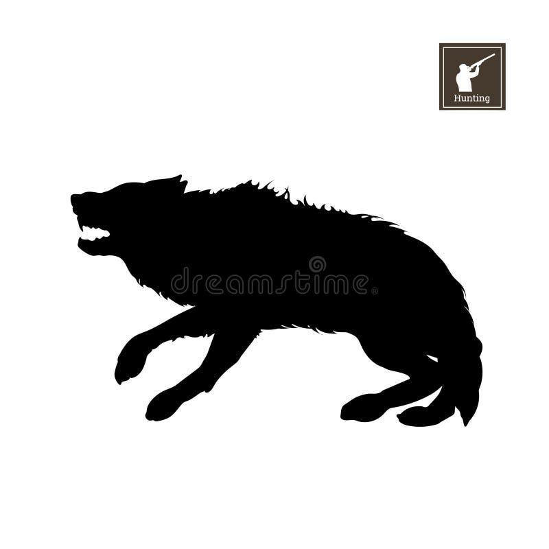 Silhueta preta do lobo amedrontado no fundo branco Animais da floresta Imagem isolada detalhada ilustração do vetor