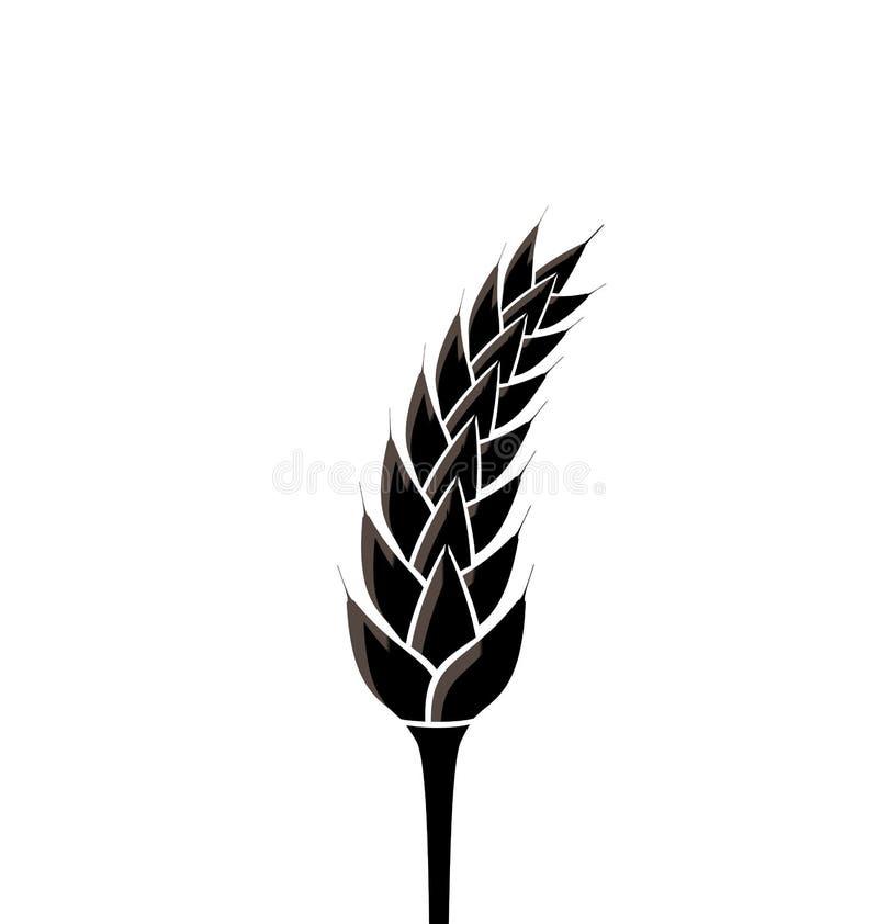Silhueta preta do spikelet do trigo isolado no branco ilustração royalty free