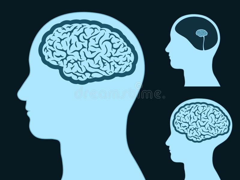 Silhueta principal masculina com o cérebro pequeno e grande ilustração do vetor