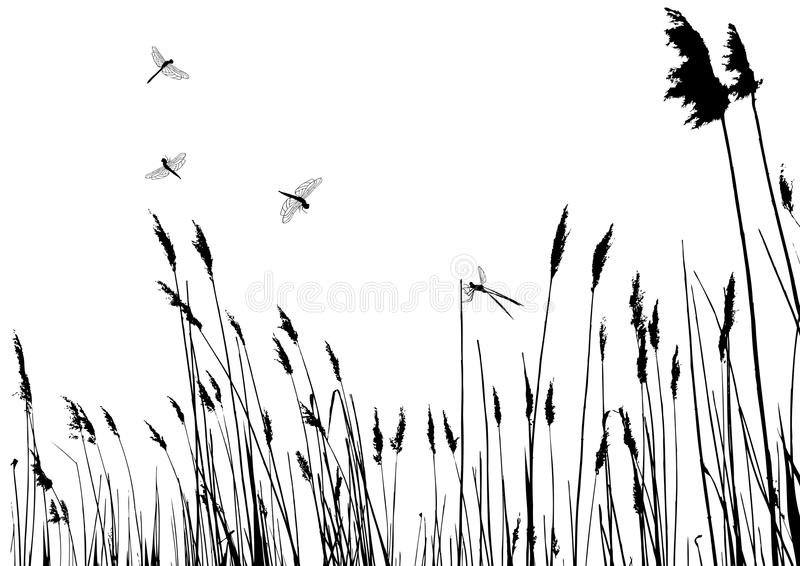 Silhueta real da grama - vetor ilustração stock