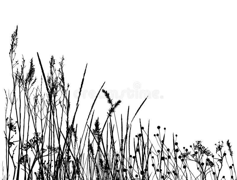 Silhueta real/vetor da grama ilustração stock