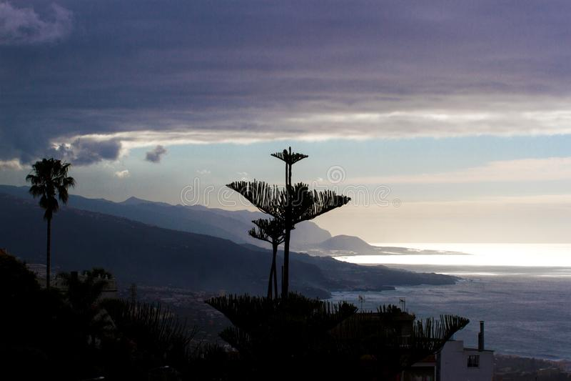 Silhuetas da agave que florescem no por do sol contra o mar Mediterrâneo Costela Brava, Spain fotos de stock