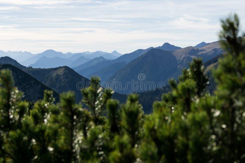 Silhuetas da montanha com floresta e o céu nebuloso fotografia de stock