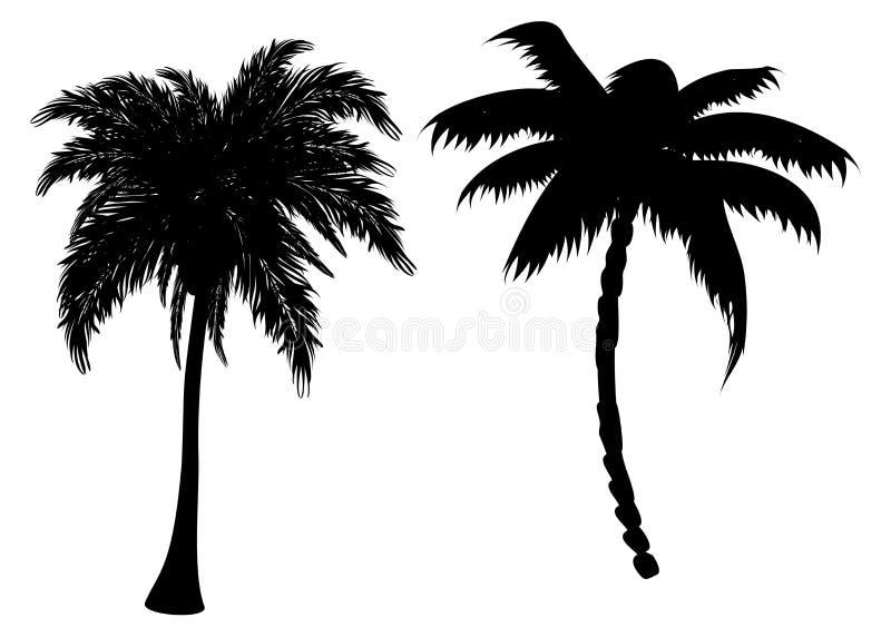 Silhuetas da palmeira ilustração royalty free