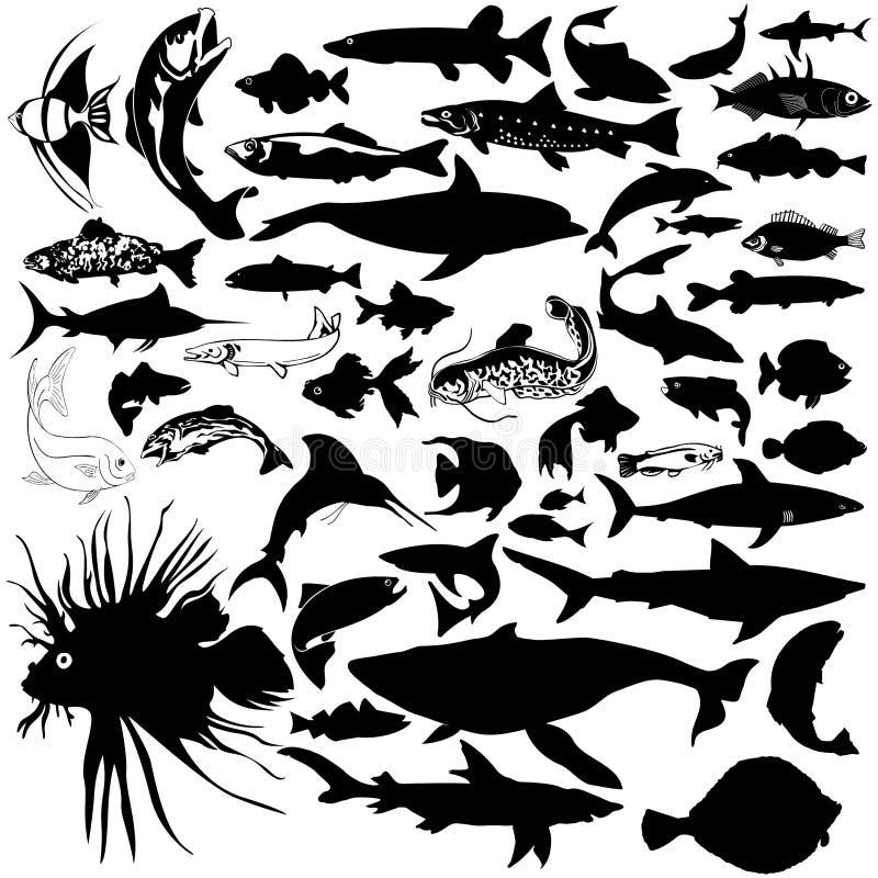 Silhuetas da vida de mar ilustração do vetor