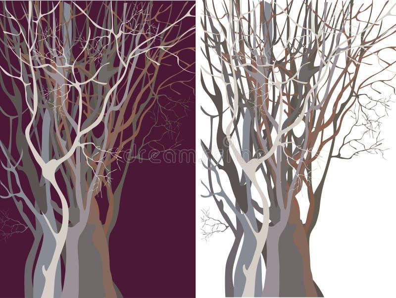 Silhuetas das árvores thickset
