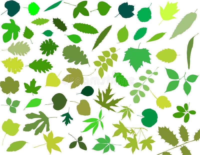Silhuetas das folhas ilustração royalty free