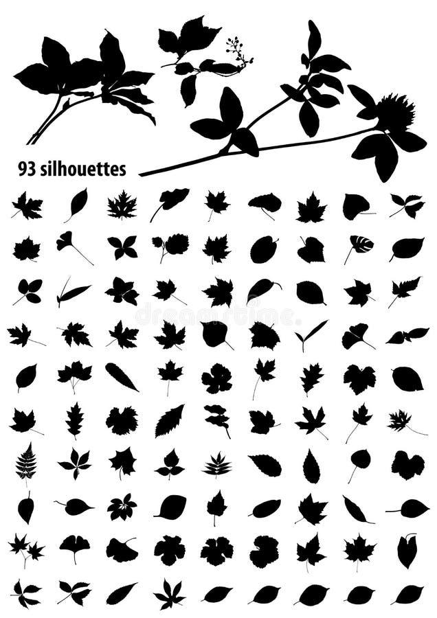 Silhuetas das folhas