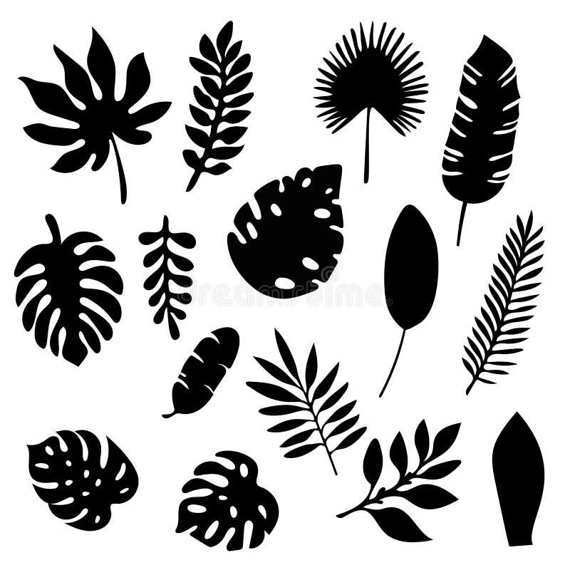 Silhuetas das folhas de palmeira ajustadas isoladas no fundo branco Grupo de elementos tropical da silhueta da folha isolado Palm ilustração do vetor