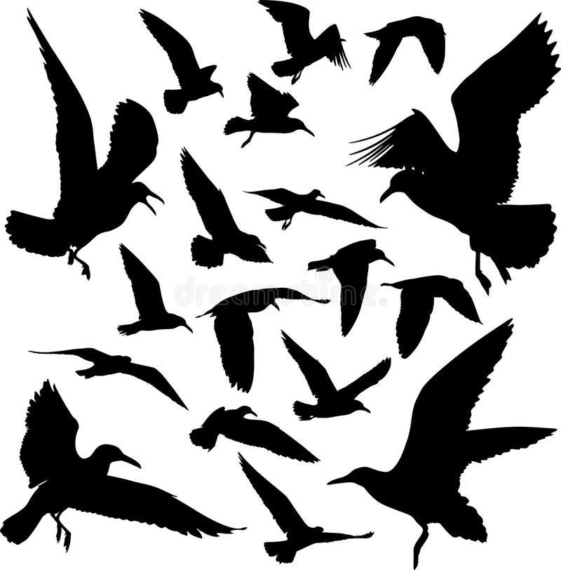 Silhuetas das gaivotas ilustração stock