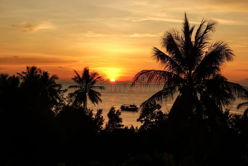 Silhuetas das palmeiras e do navio no fundo do por do sol alaranjado no mar fotos de stock royalty free