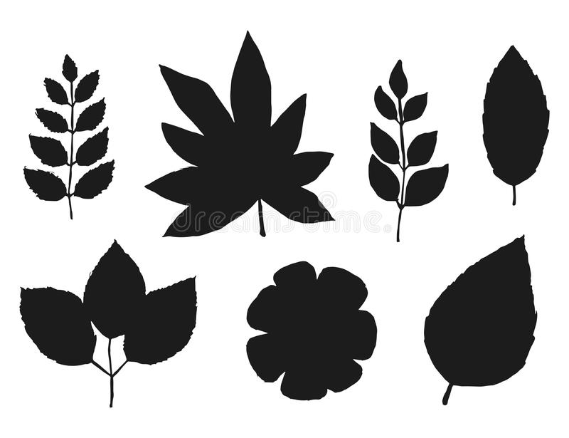 Silhuetas das plantas e das flores ajustadas Isolado no fundo branco ilustração stock