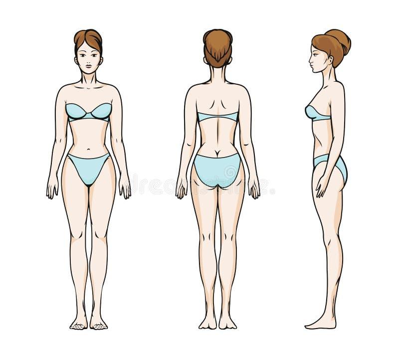 Silhuetas das poses da mulher ilustração royalty free