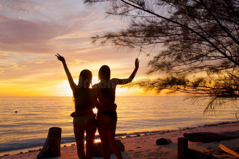 Silhuetas de duas meninas para trás na frente de um por do sol tropical pelo mar fotos de stock royalty free
