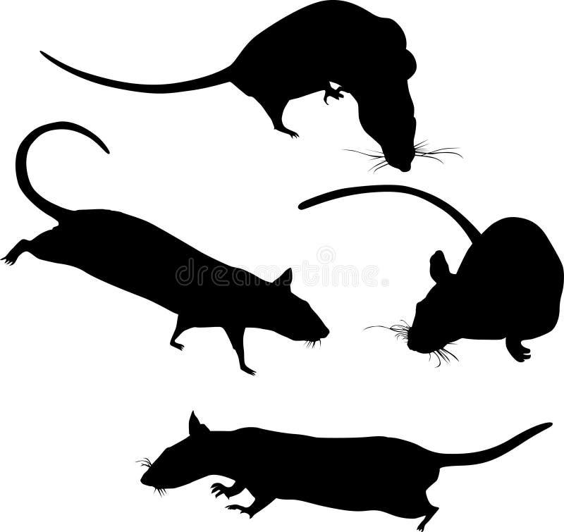 Silhuetas de quatro ratos ilustração stock