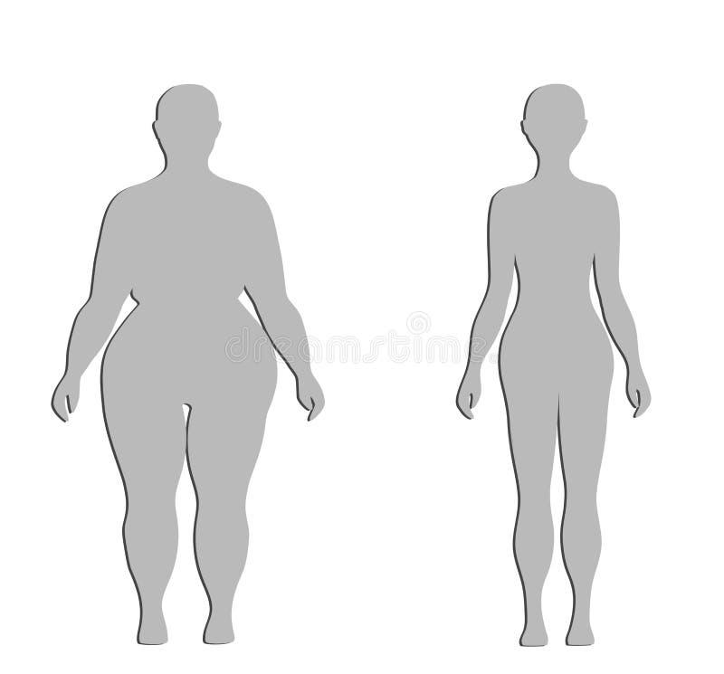 Silhuetas de uma figura fêmea grossa e normal Ilustração do vetor ilustração royalty free