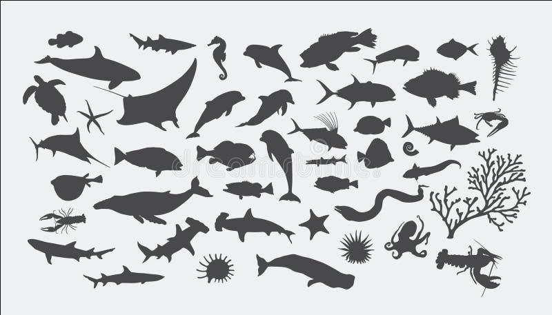 Silhuetas do animal de mar ilustração stock