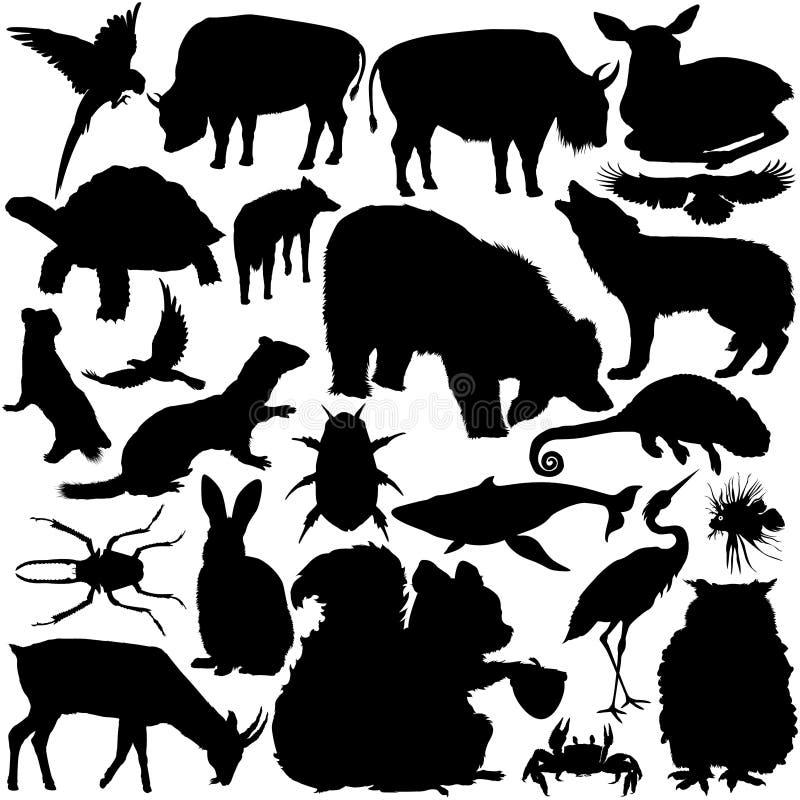 Silhuetas do animal selvagem ilustração stock