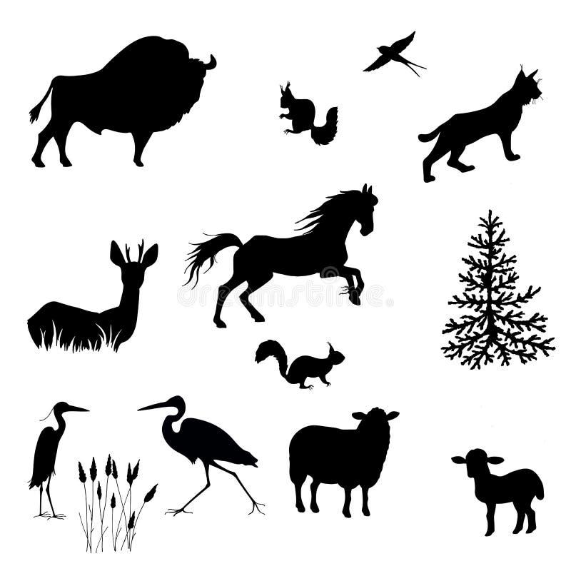 Silhuetas do bisonte, carneiro, cordeiro, lince, esquilo, garças-reais, andorinhas, gamos, vetor do cavalo ilustração do vetor