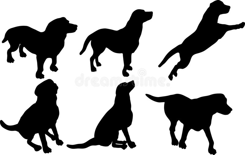 Silhuetas Do Cão Fotos de Stock Royalty Free