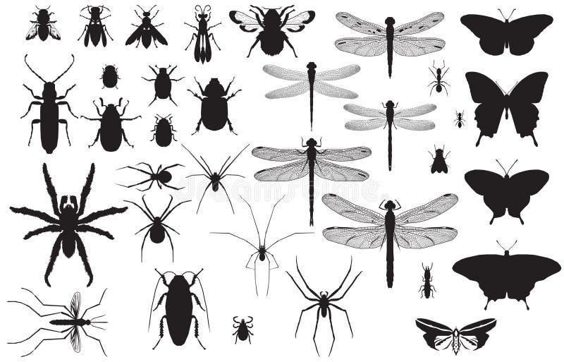 Silhuetas do inseto ilustração do vetor