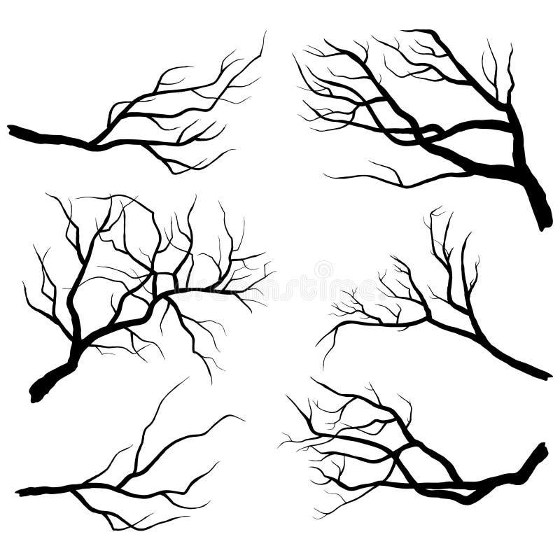 Silhuetas do ramo ilustração stock
