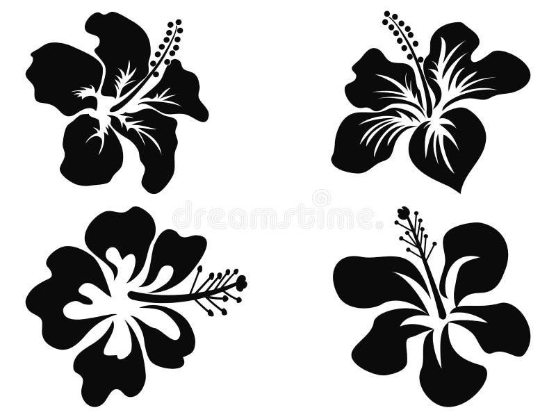 Silhuetas do vetor do hibiscus ilustração royalty free