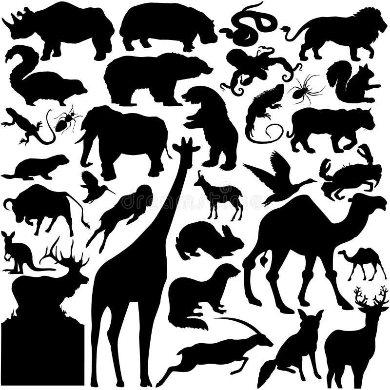 Silhuetas dos animais selvagens ilustração royalty free