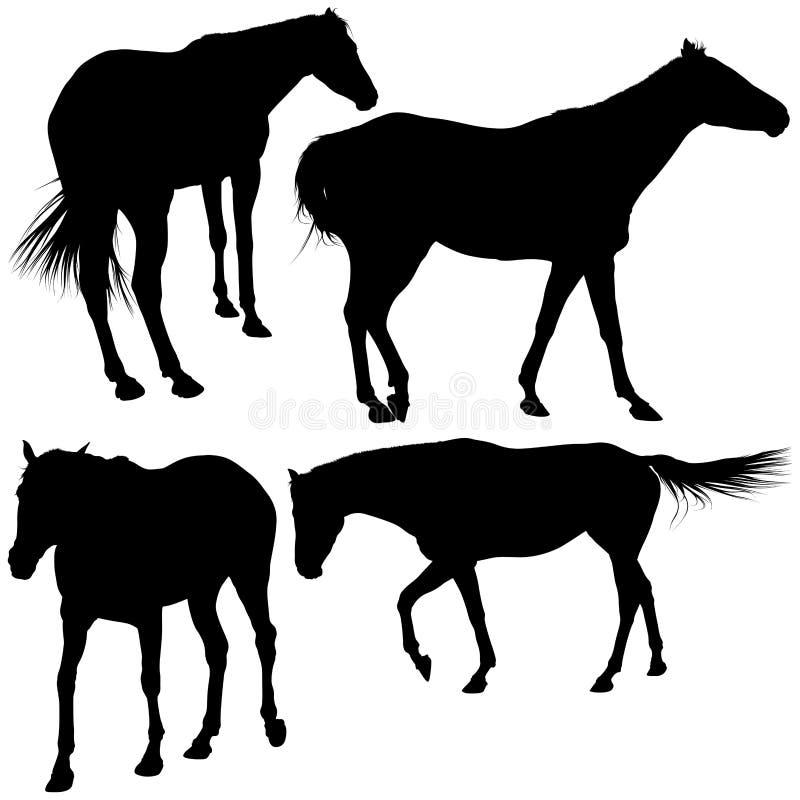 Silhuetas Dos Cavalos Imagens de Stock
