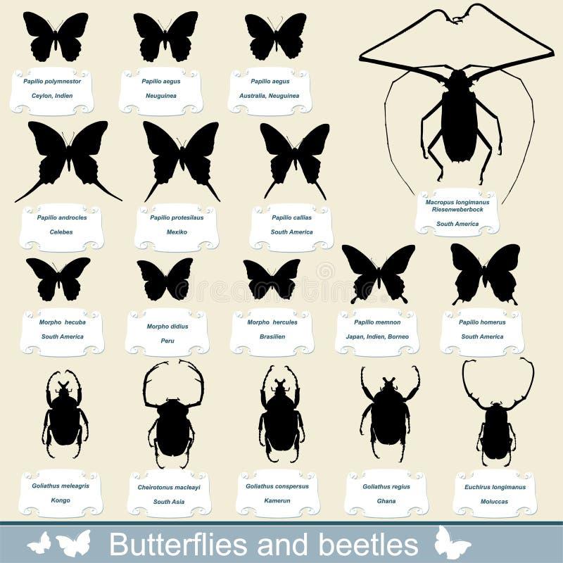 Silhuetas dos insetos - besouros e borboletas ilustração do vetor