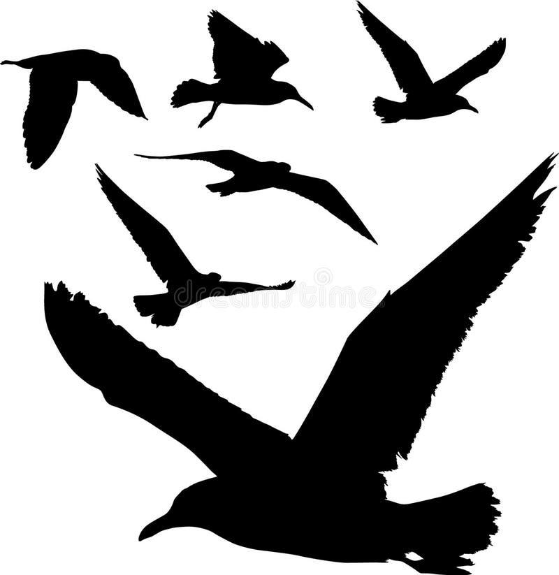Silhuetas dos pássaros ilustração royalty free