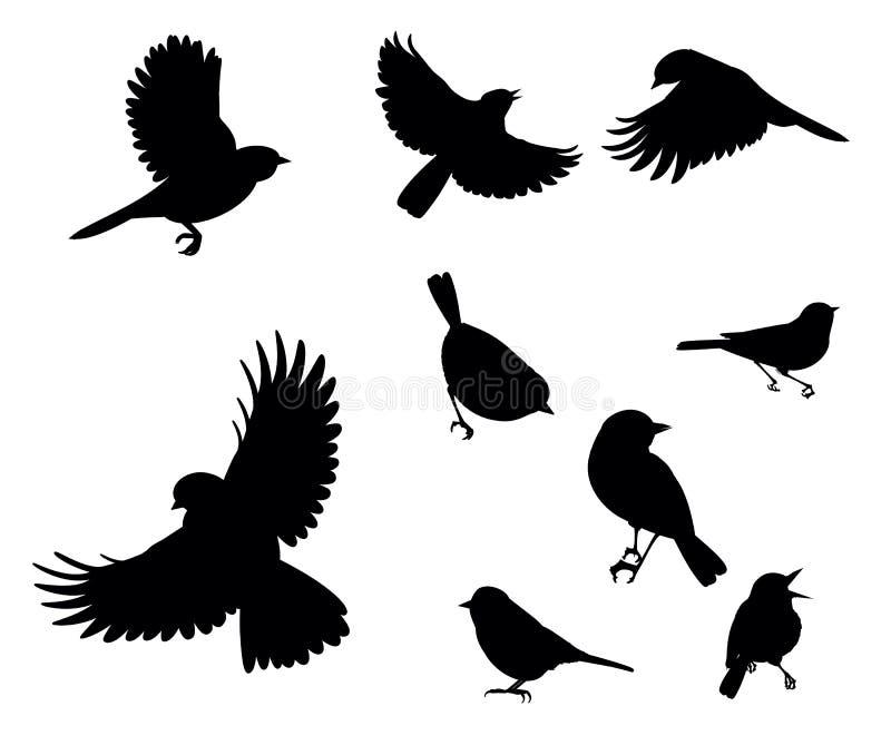 Silhuetas dos pássaros ilustração do vetor