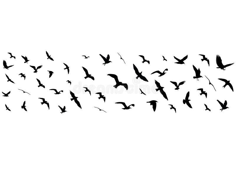 Silhuetas dos pássaros de voo no fundo branco ilustração royalty free
