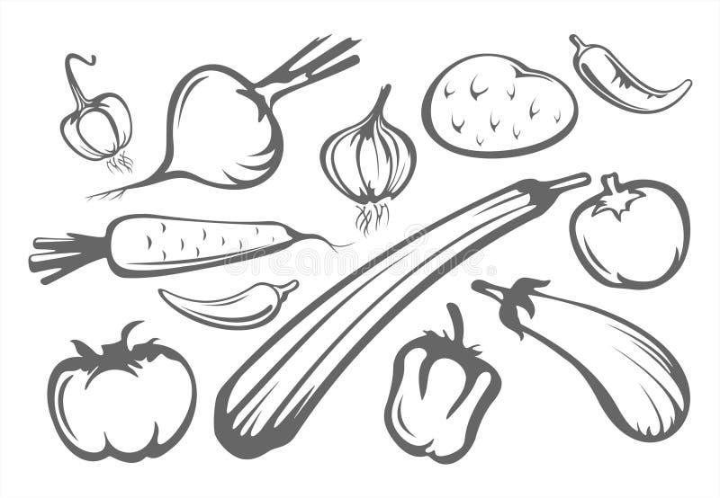 Silhuetas dos vegetais ilustração stock