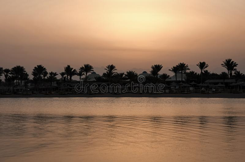 Silhuetas e água do mar da palmeira no céu da noite fotos de stock