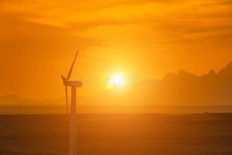 Silhuetas elétricas da exploração agrícola das turbinas eólicas no fundo do sol fotografia de stock